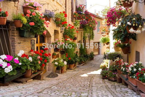 European Street Scene Wallpaper Mural, Custom Sizes Available Household-Wallpaper Maughon's