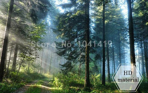 Evergreen Forest Wallpaper Mural, Custom Sizes Available