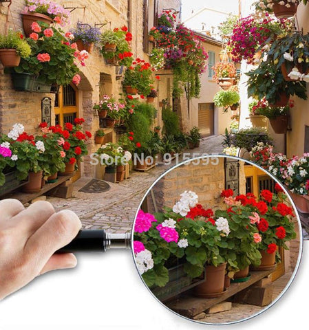 Flower Lined Italian Street Scene Wallpaper Mural , Custom Sizes Available Household-Wallpaper Maughon's