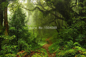 Forest Nature Landscape Wallpaper Mural, Custom Sizes Available Household-Wallpaper Maughon's