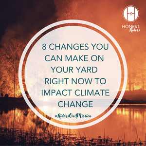 8 changes you can make on your yard right now, to impact climate change