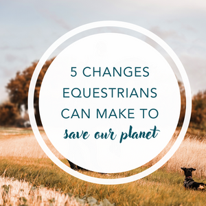 5 changes equestrians can make to save our planet