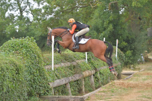Natalie McGoldrick, vet and event rider