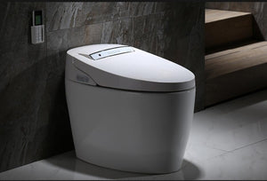 Luxury Intelligent Smart Bidet Toilet - italianluxurygroup.com.au