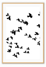 Load image into Gallery viewer, ITALIAN LUXURY GROUP Print Small		50x70cm / Oak Sky birds I Brand