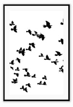 Load image into Gallery viewer, ITALIAN LUXURY GROUP Print Small		50x70cm / Black Sky birds I Brand
