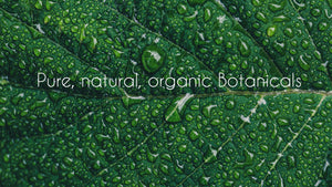 pure natural organic botanicals