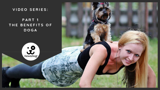 Video Series: The Benefits of Doga