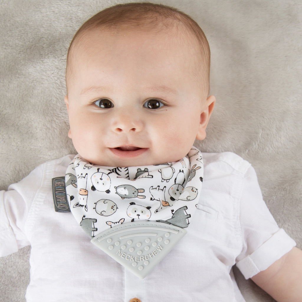 Cheeky Chompers - Teething - Bibs - Baby at the Bank