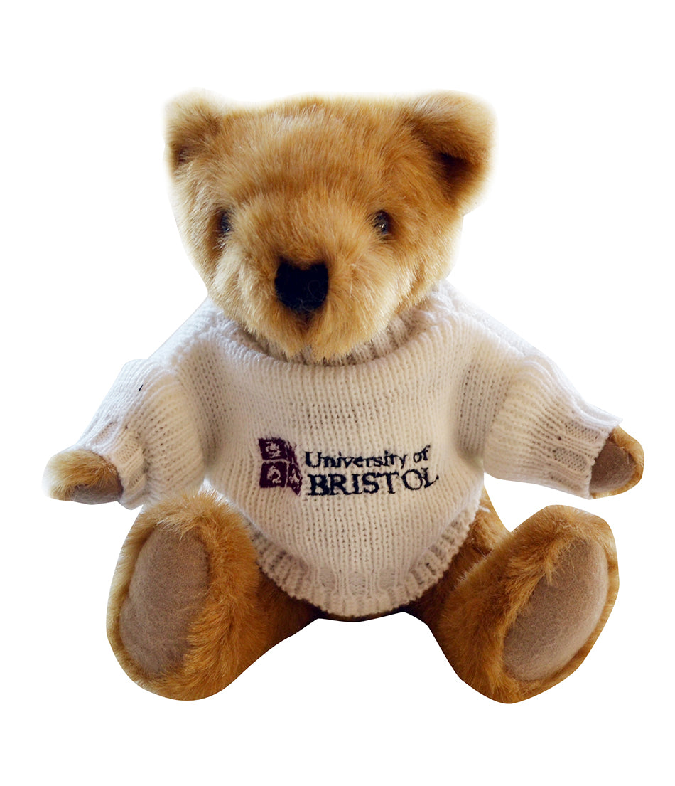Buster Bear in UoB Sweater