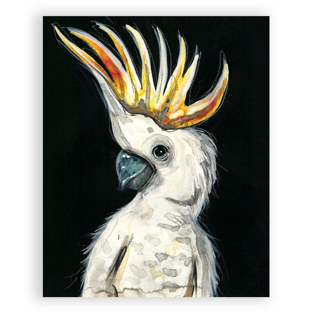 """Crested Cockatoo"""
