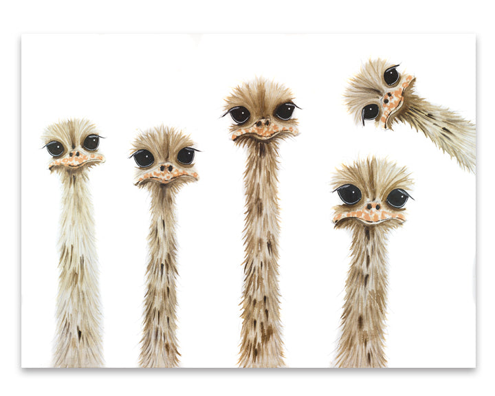 """Ostrich Family Reunion"""
