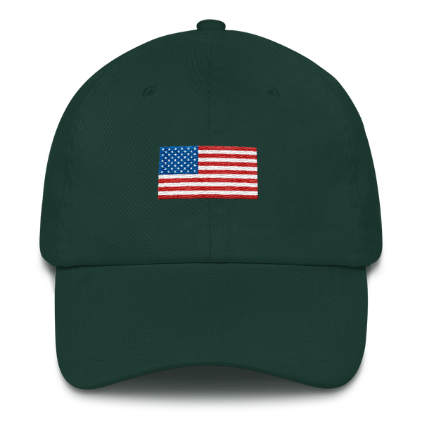 USA Dad Hat