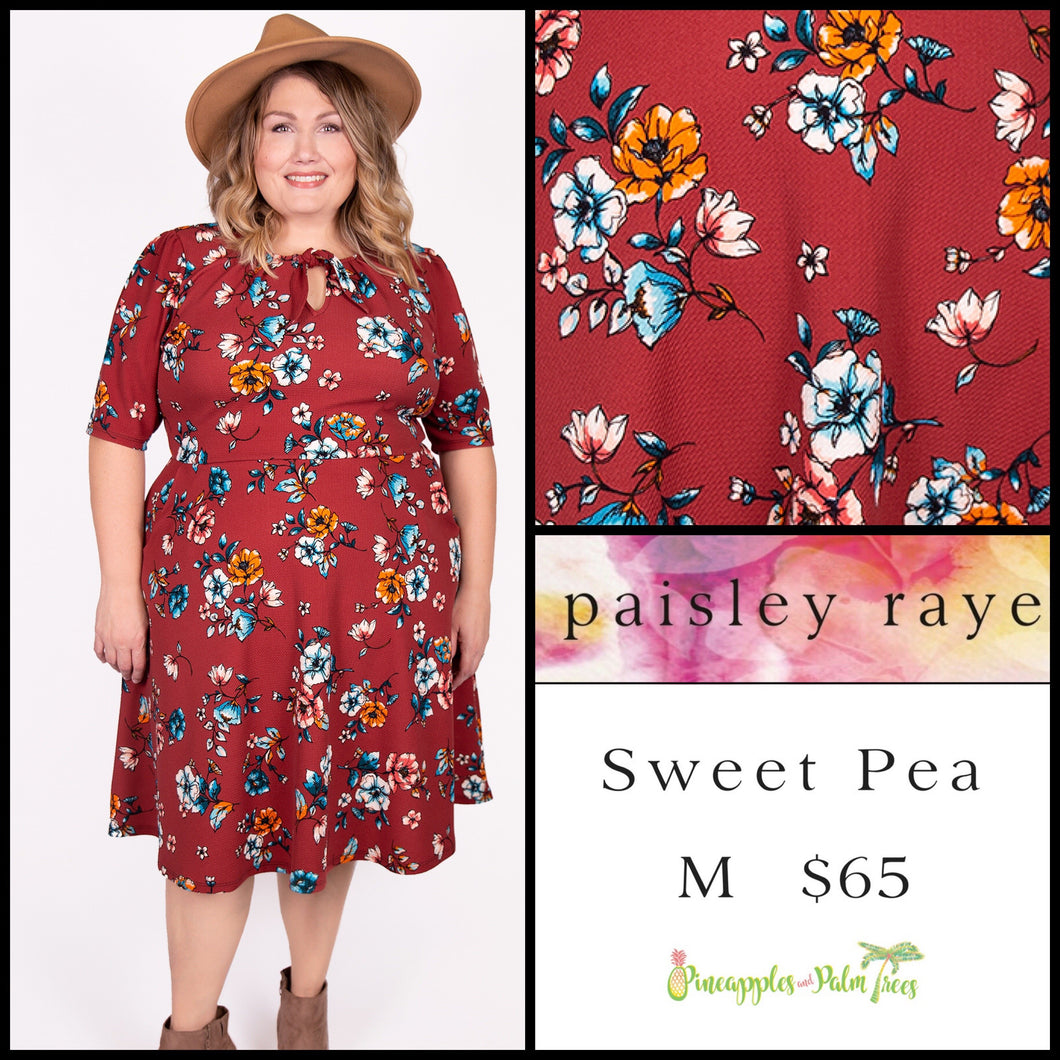 Paisley Raye Sweet Pea Dress, M Red floral, shop this Paisley Raye Sweet Pea Dress and more at pineapplesandpalmtrees.net or locally in the Twelve Bridges Community of Lincoln, California.