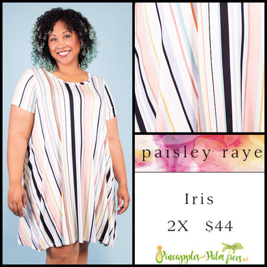 Paisley Raye Iris easy swing dress with scoop neck, pockets and keyhole back detail, 2X, bright multi colored vertical stripes, shop this Paisley Raye Iris Dress and more at pineapplesandpalmtrees.net or locally in the Twelve Bridges Community of Lincoln, California