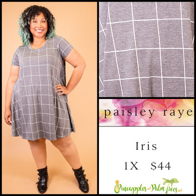 Paisley Raye Iris easy swing dress with scoop neck, pockets and keyhole back detail, 1X gray with window pane pattern, shop this Paisley Raye Iris Dress and more at pineapplesandpalmtrees.net or locally in the Twelve Bridges Community of Lincoln, California