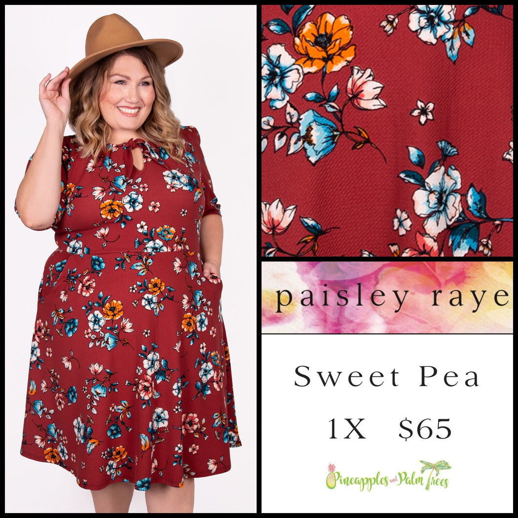 Paisley Raye Sweet Pea Dress, 1X red floral, shop this Paisley Raye Sweet Pea Dress and more at pineapplesandpalmtrees.net or locally in the Twelve Bridges Community of Lincoln, California.