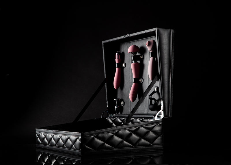 luxury sex toy kit, sex toy kit, sex toy collection, sex storage, sex toy set, sex trunk, novelty toys for couples, sex toys for him and her, best sex toy kit 2020, BDSM, luxury sex toy storage, sophisticated storage for sex toys