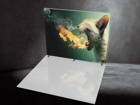 Zilla FIRE. 10' Backlit Display, Single-sided