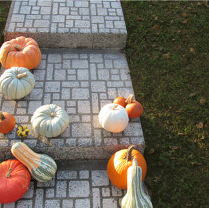 Fall for Cobblestone Sale: Cobblestone Stencils $35