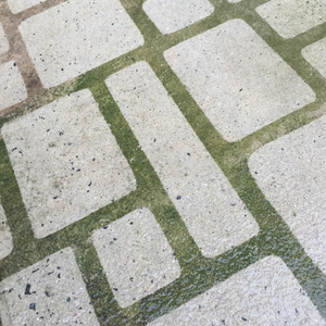 Driveway Art® Cobblestone Stencil being showcased by Adult man.