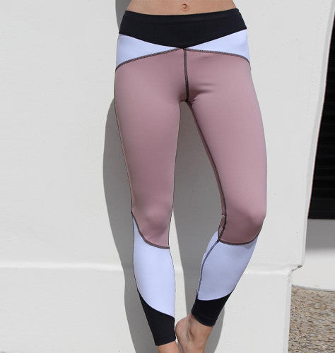 Paradox High Waisted Cosmetic Panel Sports Tights