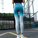 Ombre Seamless Sports Tights - Blue