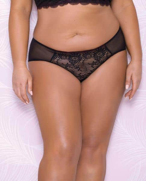 Scallop Lace, Mesh Hipster Panty Black 2X
