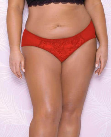 Scallop Lace, Mesh Hipster Panty Red 1X
