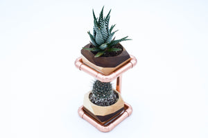 Geometric Double Cactus & Succulent Planter with