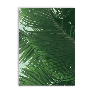 Large Size Palm Leaves Canvas Painting Wall