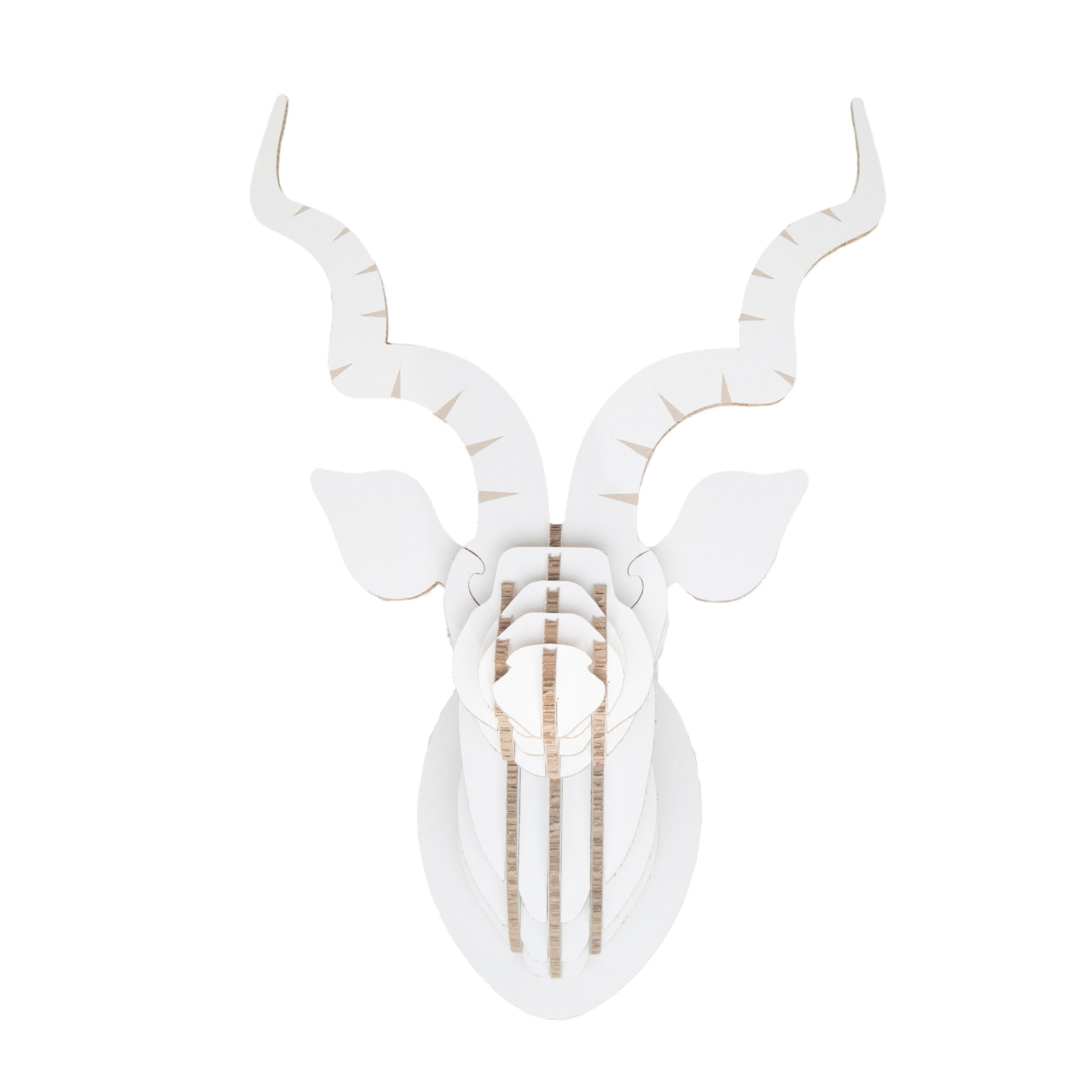 Kudu Trophy Head in X-Board