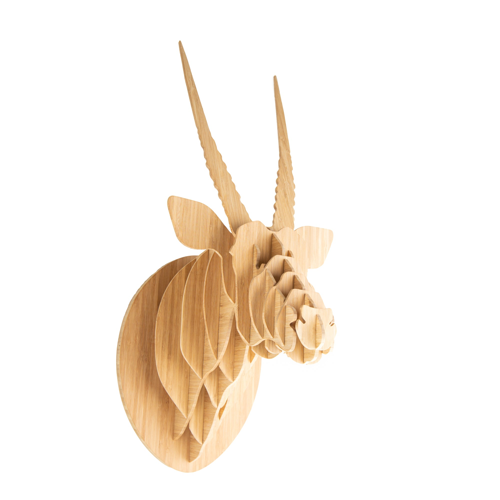 Oryx Trophy Head in Bamboo (med)