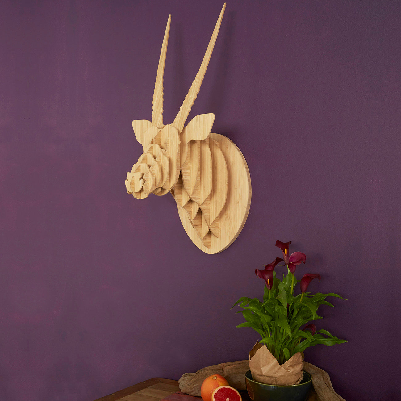 Oryx Trophy Head in Bamboo