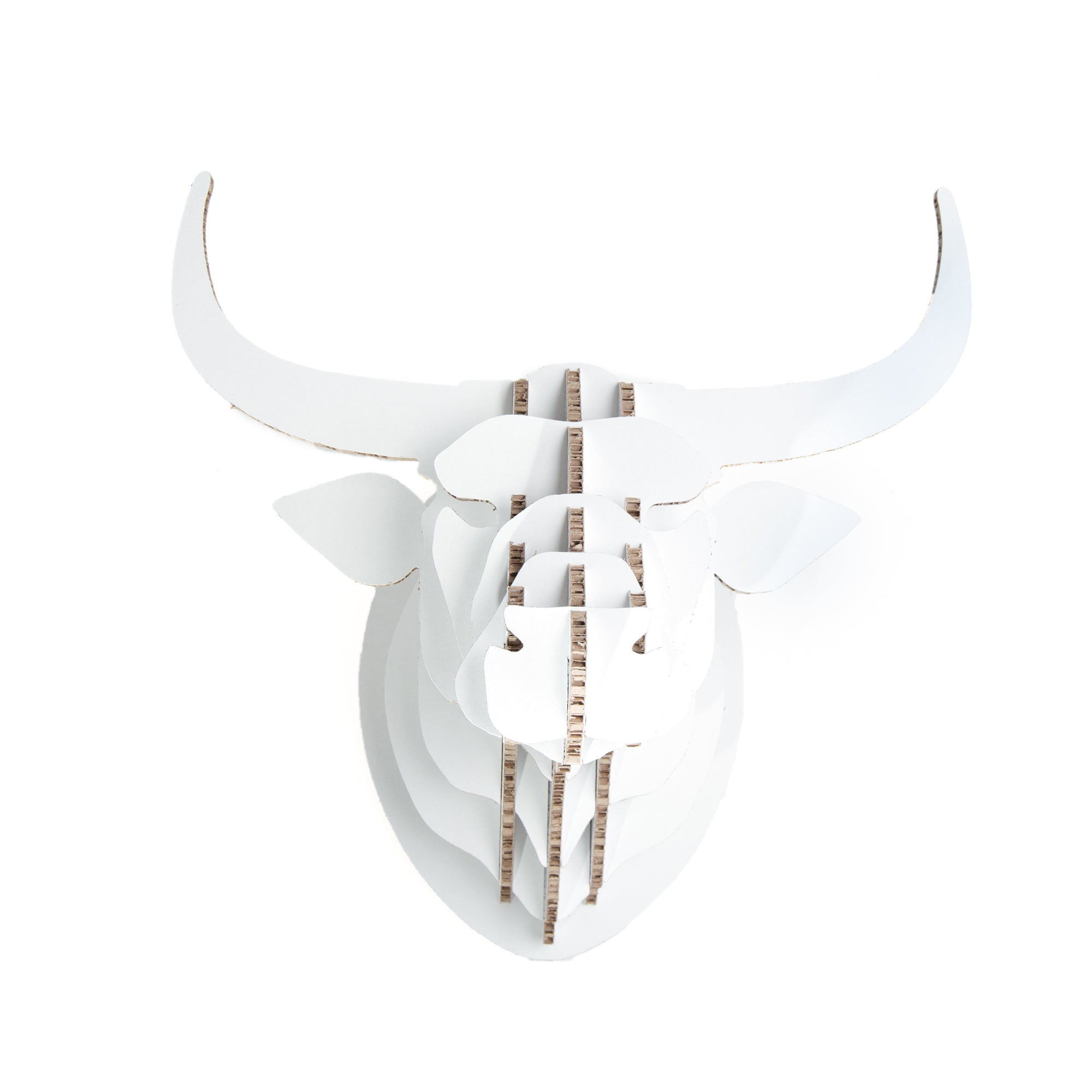 Nguni Trophy Head in X-Board