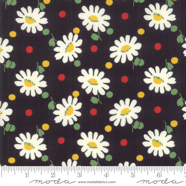 Bubble Pop 61-21 Black w/ Daisies
