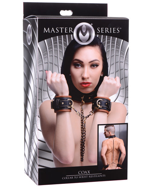 Master Series Coax Collar To Wrist Restraints