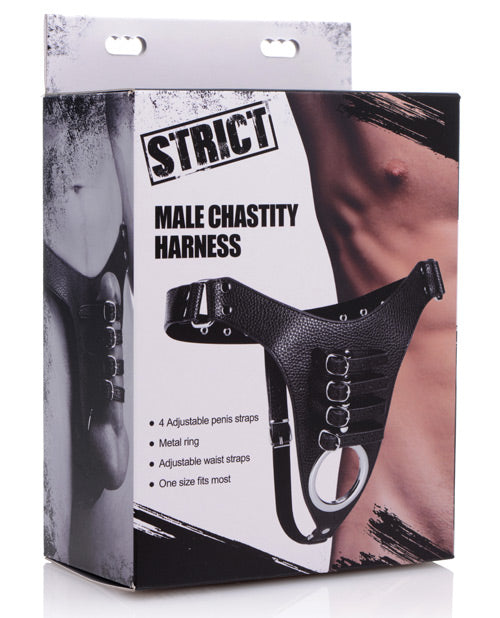 Strict Male Chasity Harness
