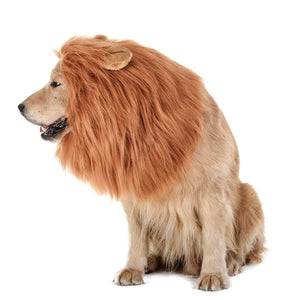 Dog Lion Mane | The Parody Shop