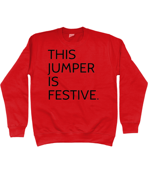 'THIS JUMPER IS FESTIVE' CHRISTMAS JUMPER