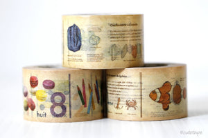 MT Encyclopedia Washi Tape Japanese