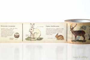 Animals Encyclopedia Washi Tape MT