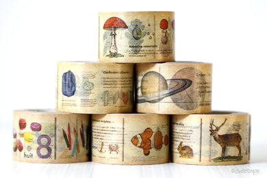 Encyclopedia Washi Tape MT Masking Tape