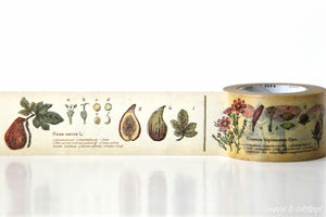 Plant Encyclopedia Washi Tape MT Japanese