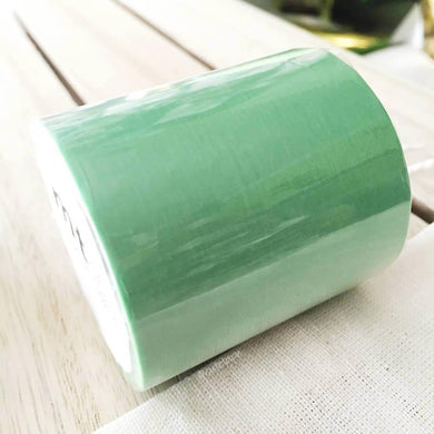 Solid Mint Wakamidori MT CASA Washi Tape 50mmx10m