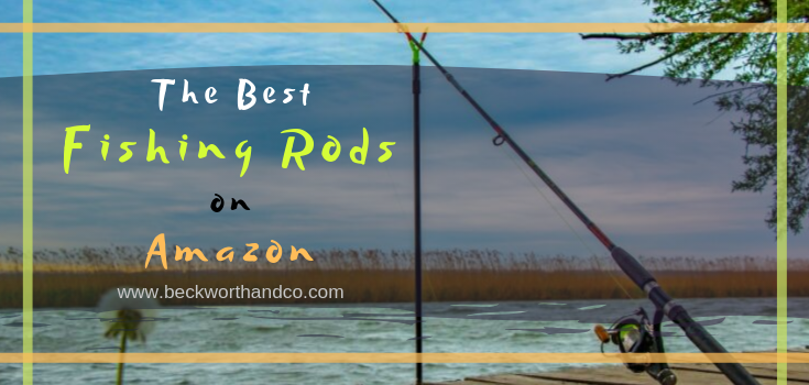 The Best Fishing Rods on Amazon