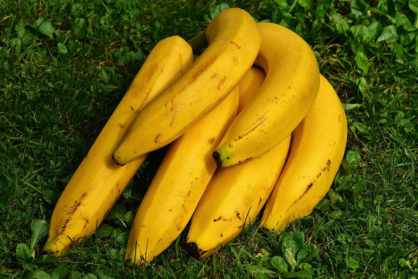 bananas on the grass