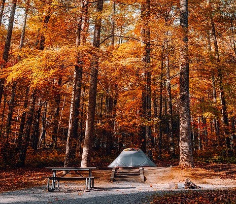 fall camping in the woods