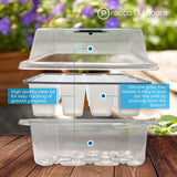high quality clear seedling tray