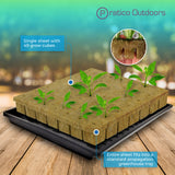 rockwool grow cubes 1.5 inch in greenhouse tray